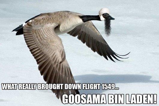 goosama