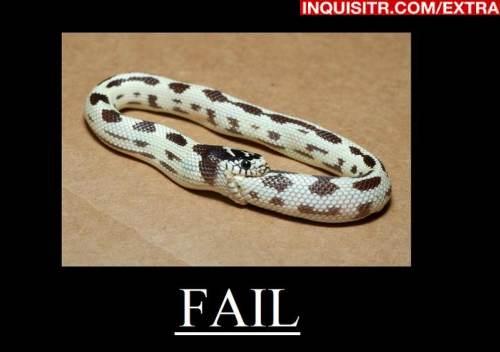 snake-fail
