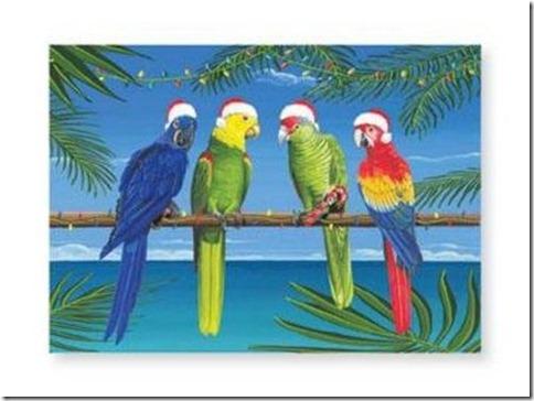 Santa_parrots
