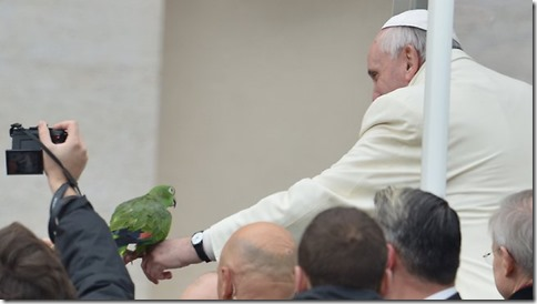 432776-pope-with-parrot